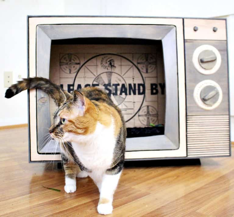CatastrophiCreations Vintage TV Cat Bed Made to Order