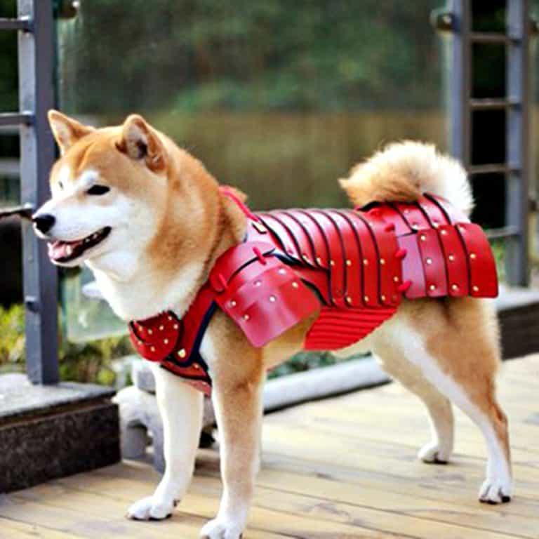Samurai Age Samurai Pet Armor Pet Supply
