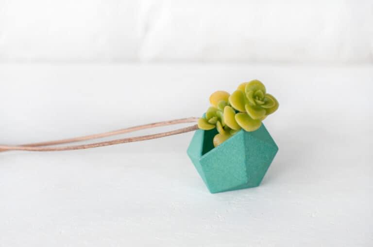 Wearable Planter Icosahedron Planter Necklace Green Cacti Fashion Accessory