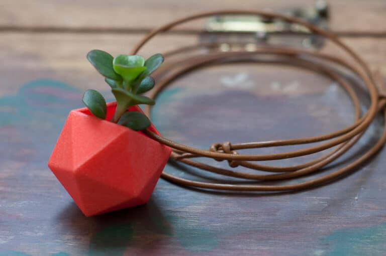 Wearable Planter Icosahedron Planter Necklace Red Plant Lover Gift Idea