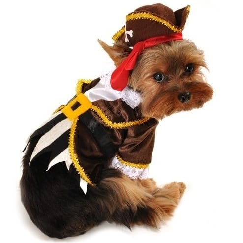 Ahoy Thar Mates Pirate Dog Costume