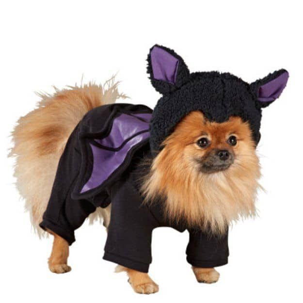Bat Wings Pajama Dog Costume