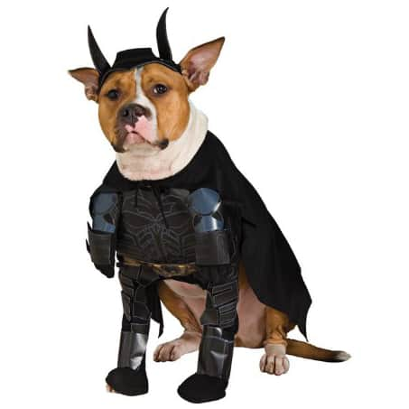 Batman The Dark Knight Rises Pet Costume