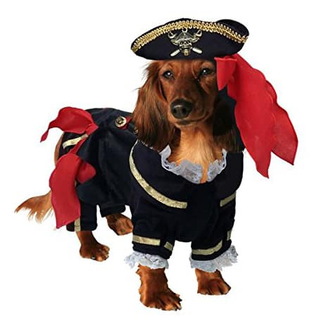 Buccaneer Deluxe Pirate Costume for Dogs