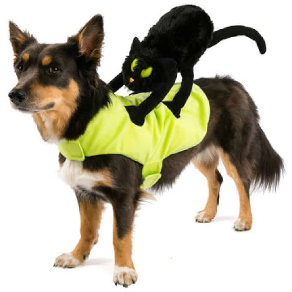 Cat Rider Dog Costume