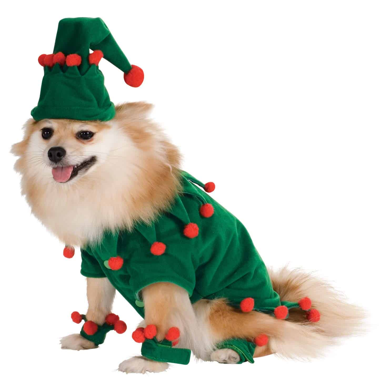 Cute Dog Christmas Green Elf Costume