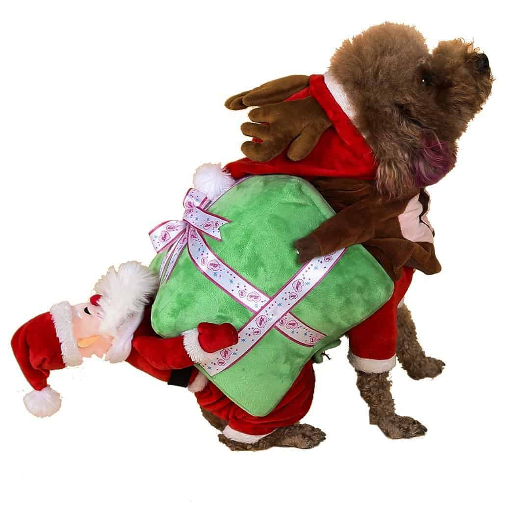 Santa and Reindeer Carrying Gift Dog Costume