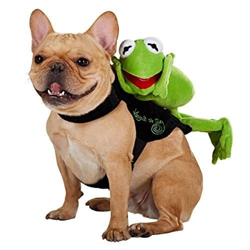 Sesame Street Kermit the Frog Rider Dog Costume