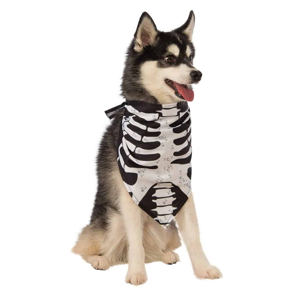 Skeleton Costume Dog Bandana