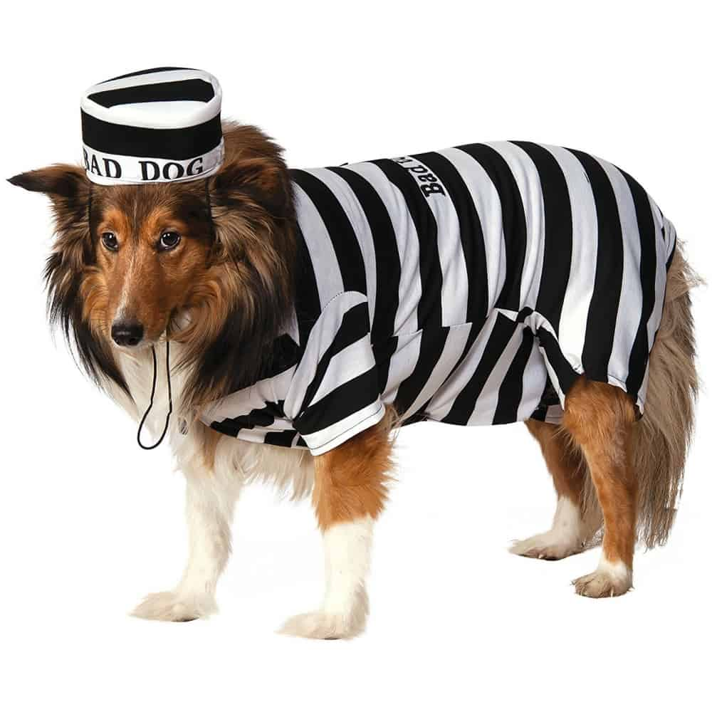 Striped Dog Prison Costume