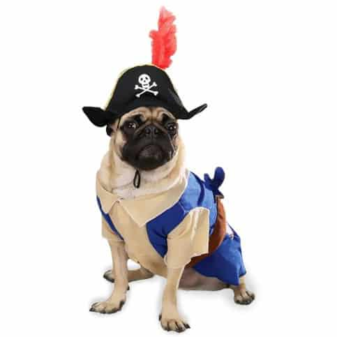 Zack & Zoey Pirate Pup Costume