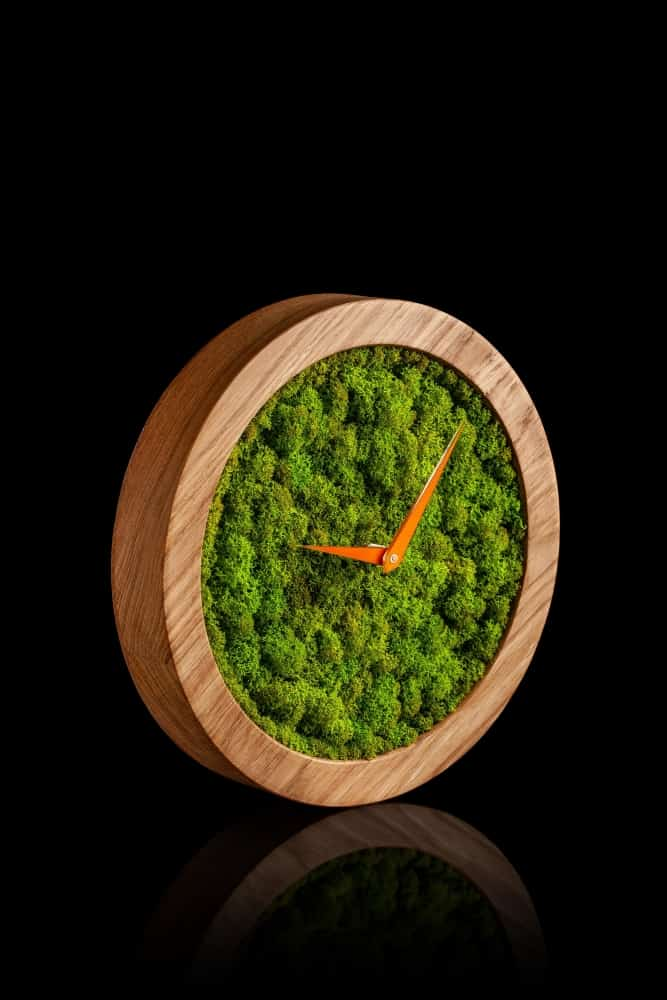GiftvalleyDesign Reindeer Moss Wooden Clock