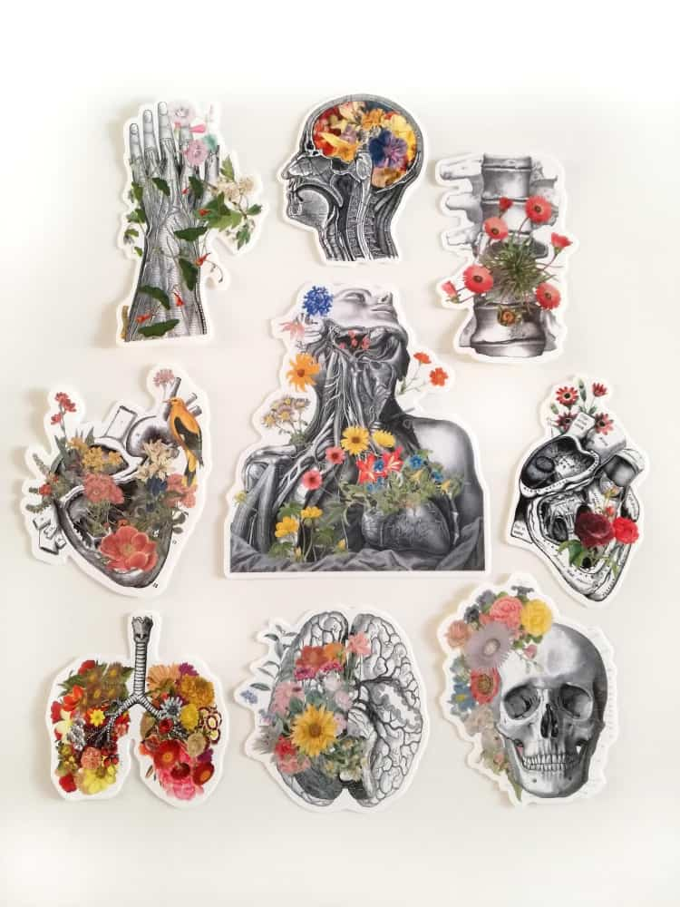 PRRINT Human Anatomy with Flowers Set Decal Stickers