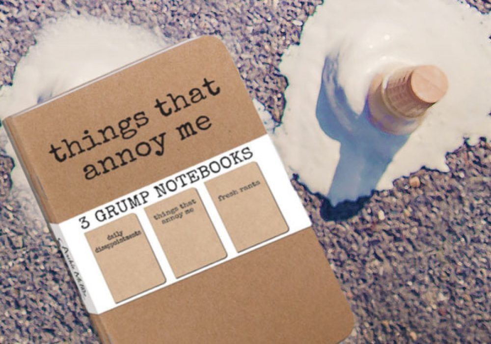 Accoutrements Things That Annoy Me 3 Grump Notebooks Funny Gag Gift Idea