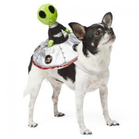 Alien-Rider-Dog-Costume.jpg