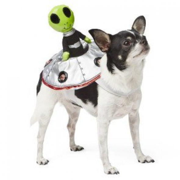 Alien-Rider-Dog-Costume.jpg