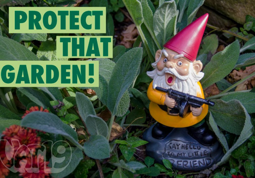 Angry Little Garden Gnome Protect your Garden