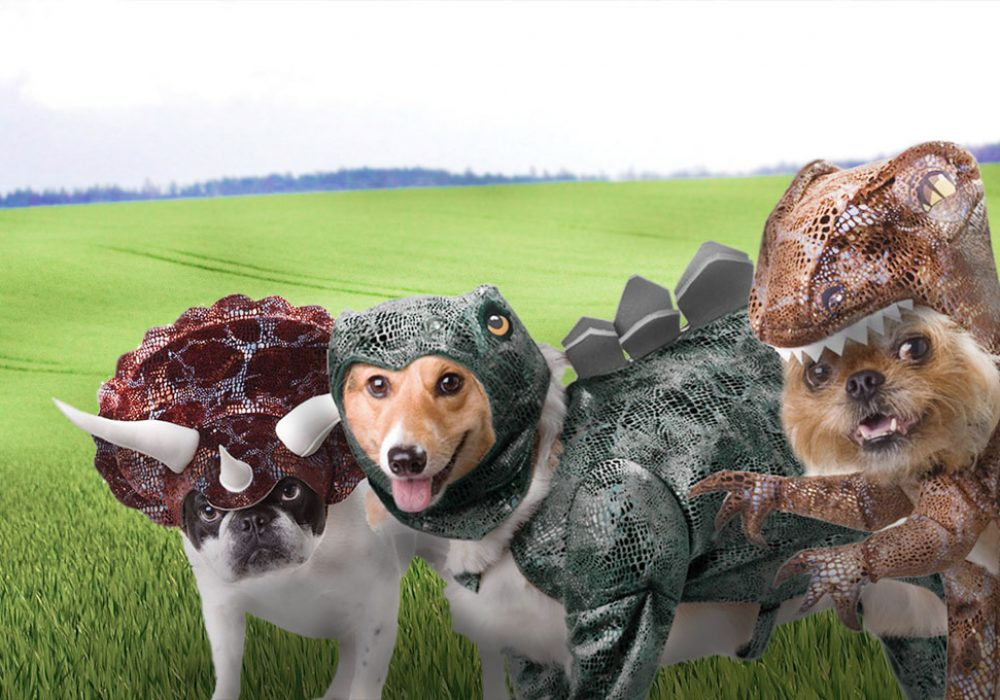 Animal-Planet-Dinosaur-Dog-Costumes-Cool-Pet-Related-Stuff-to-Buy