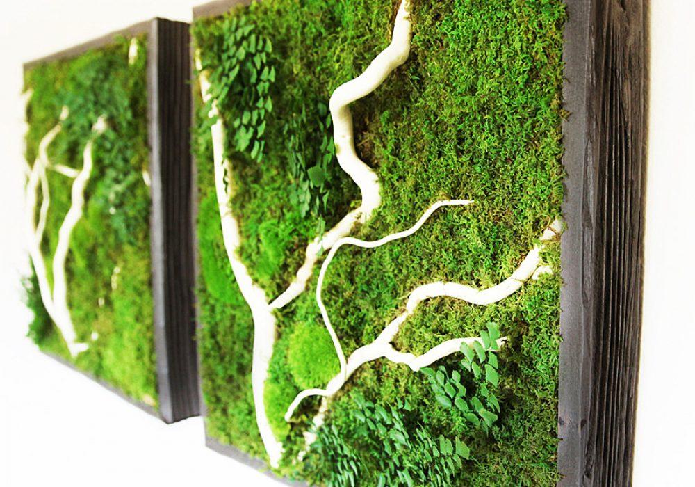 Artisan Moss No Care Green Wall Art A Nice Gift Idea