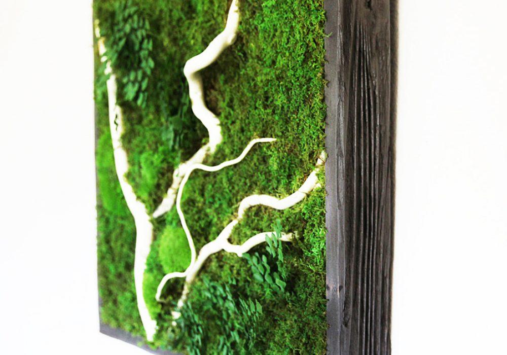 Artisan Moss No Care Green Wall Art Cool Novelty Item