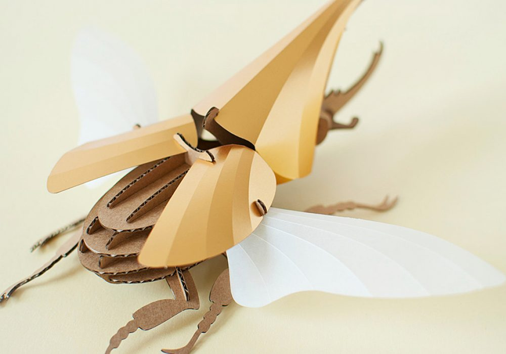 Assembli Shop Hercules Beetle Kit Paper Sculptures