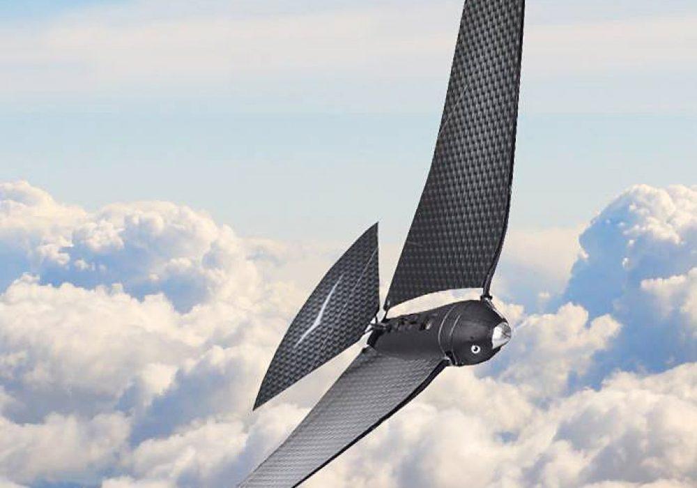 Avitron Remote Control Bionic Flying Bird Version 2 Nice Gift for Him