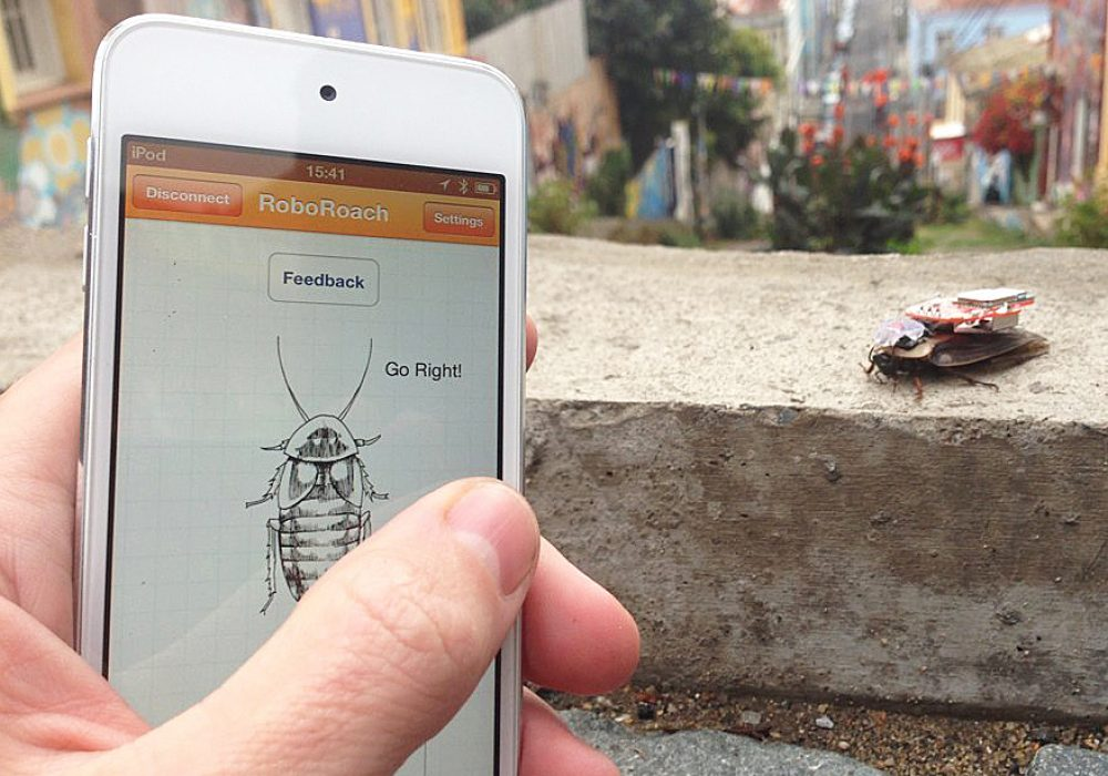 Backyard Brains RoboRoach Gift Idea For Teenager