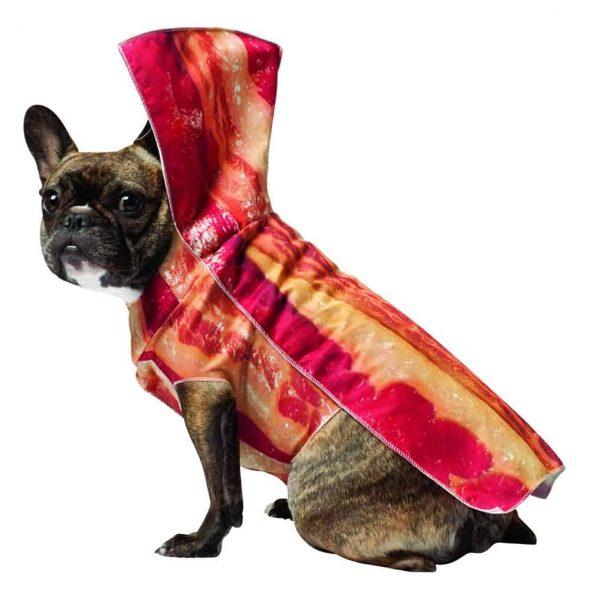 Bacon-Dog-Costume.jpg