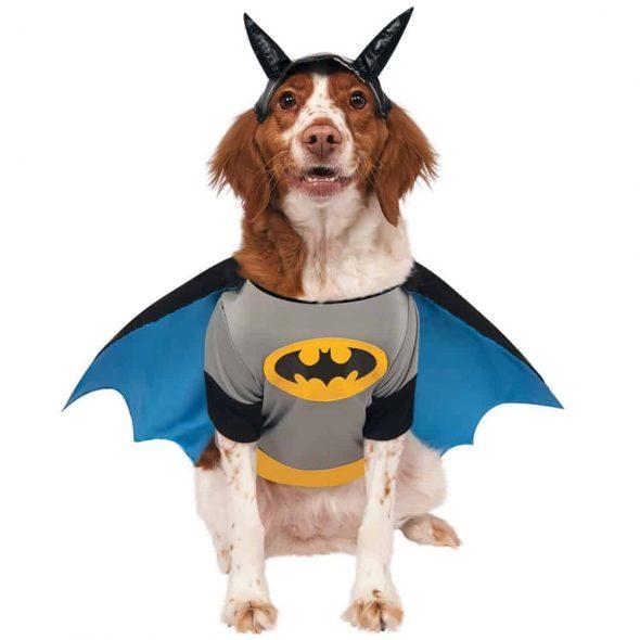 Batman-Dog-Costume.jpg