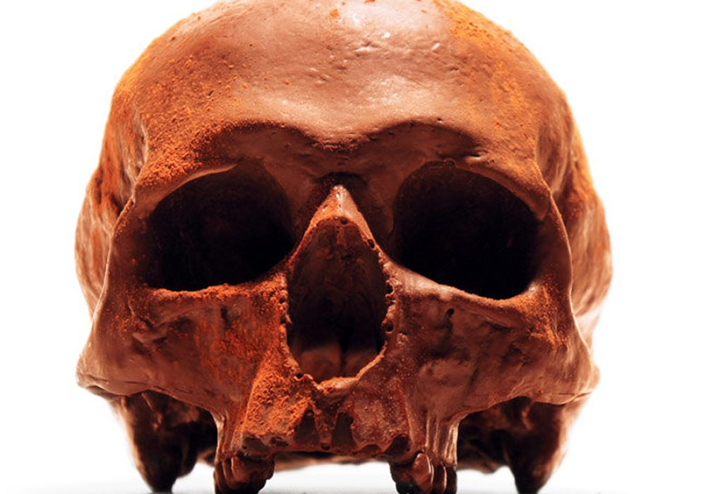 Black Chocolate Co Anatomically Correct Chocolate Skull Belgian Chocolate
