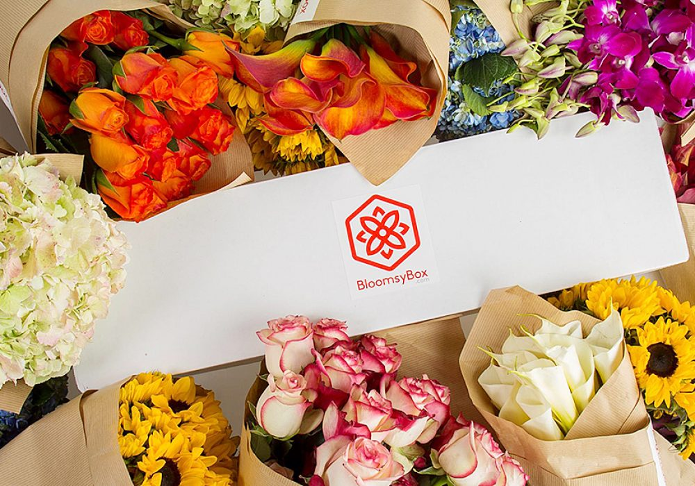 BloomsyBox Flowers of the Month Subscription Flower