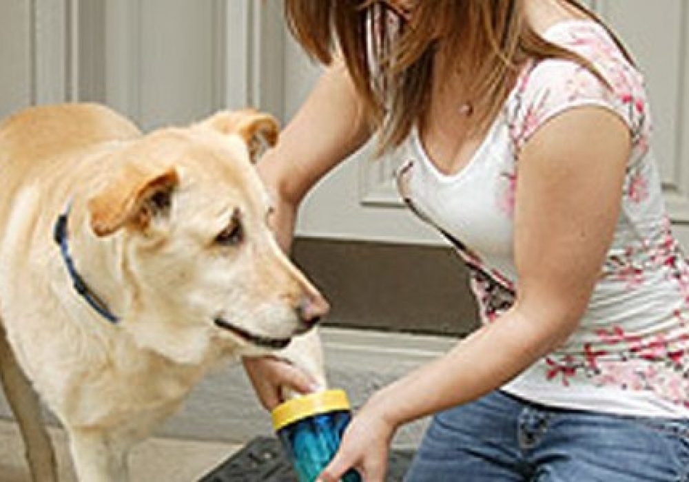 Brushless Paw Washer for Dogs Gift for Pet Lovers