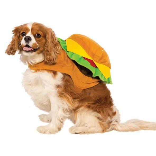 Burger-Dog-Costume.jpg