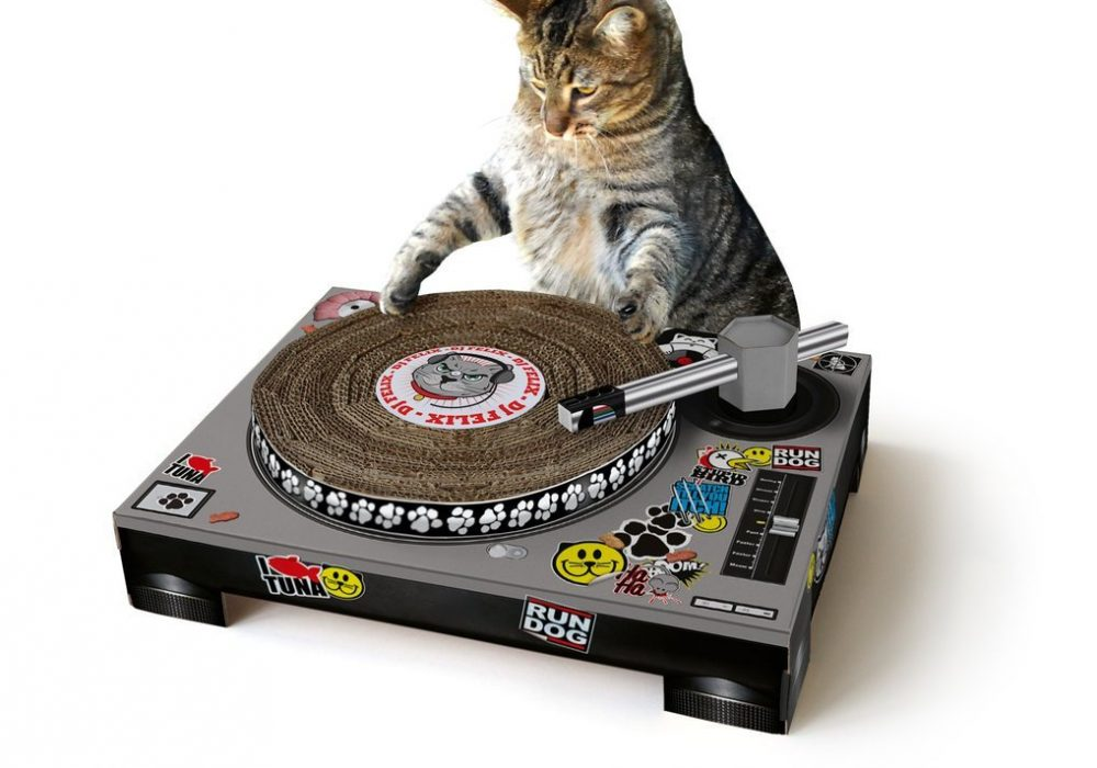 Cat Scratch DJ Turntable with Cool Stickers
