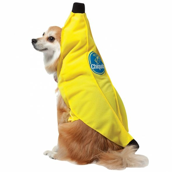Chiquita-Banana-Pet-Costume.jpg