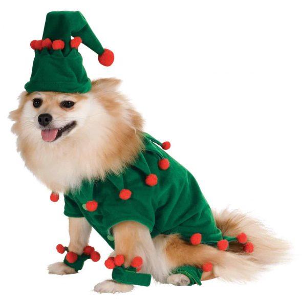 Cute-Dog-Christmas-Green-Elf-Costume.jpg