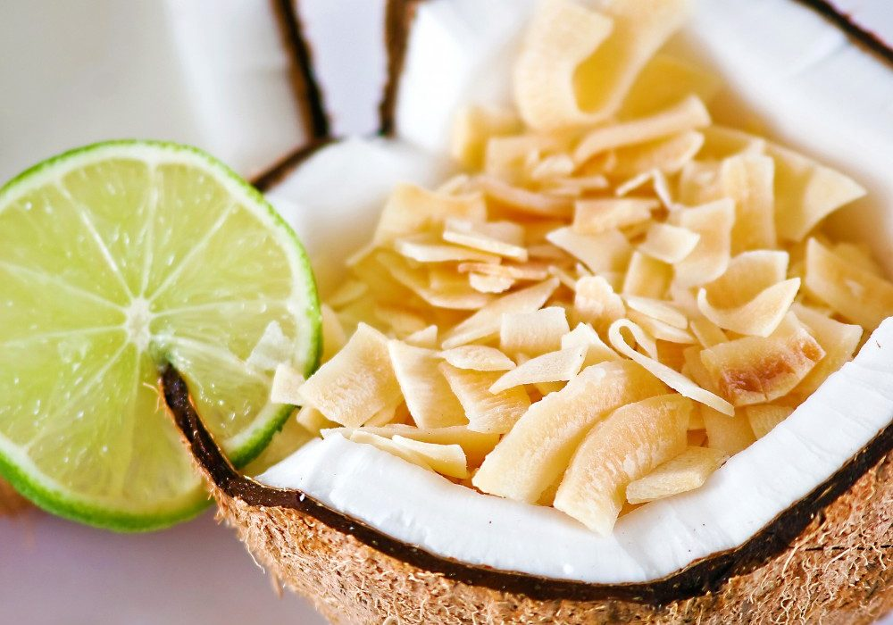 Dang-Toasted-Coconut-Chips-Healthy-Food-Snack-for-Kids