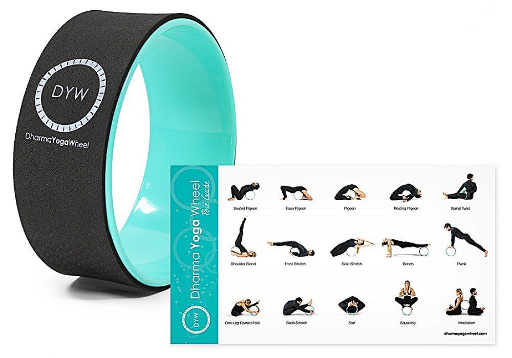 dharma-yoga-wheel-basic-eco-nomical-wheel-health-equipment