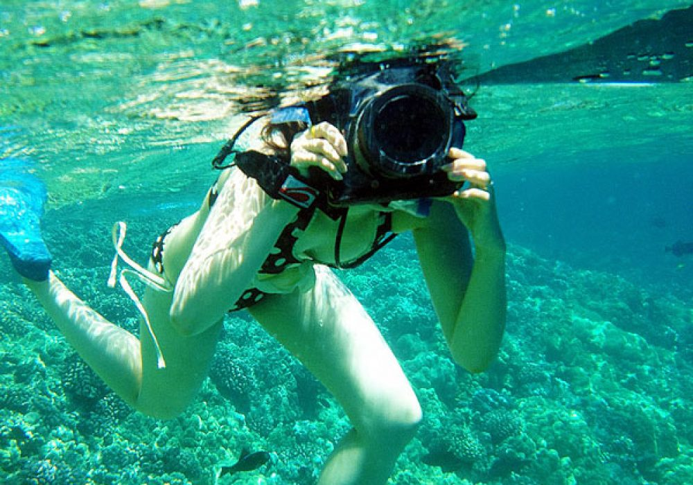 Dicapac WP-S10 Waterproof Case DSLR Accessory