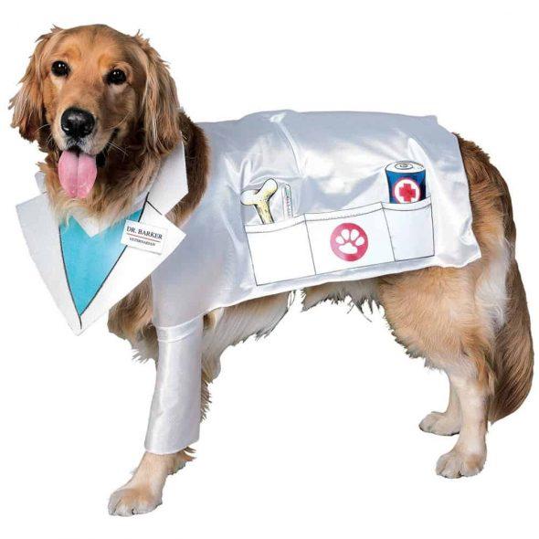 Doctor-Dog-Costume.jpg