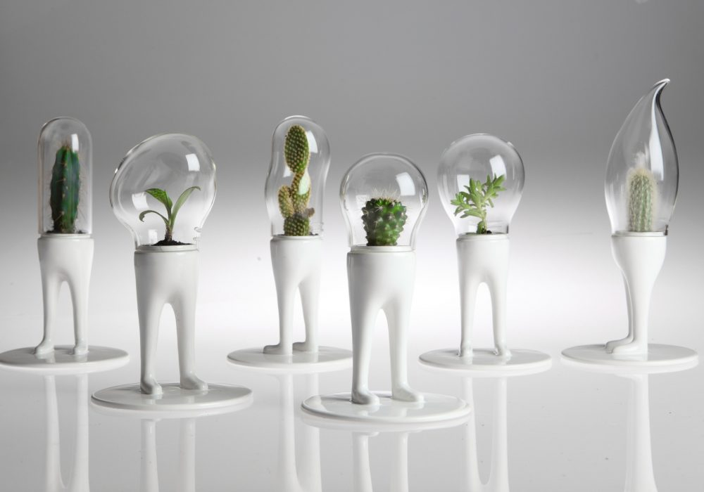Domsai Terrarium by Matteo Cibic Weird Alien Inspired Design