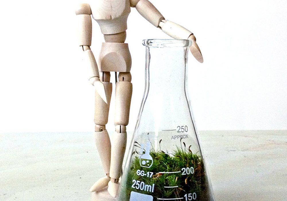 doodle-birdie-chemistry-flasks-terrarium-set-pet-plant