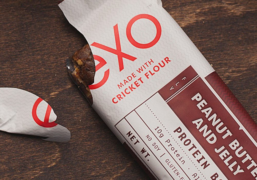 Exo Cricket Flour Protein Bars Weird but Healthy Snack