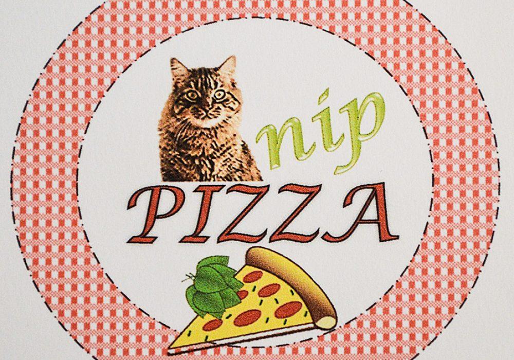 Fanti Catnip Pizza Pet Accessory