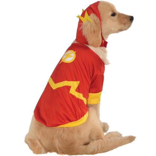 Flash-Pet-Costume.jpg