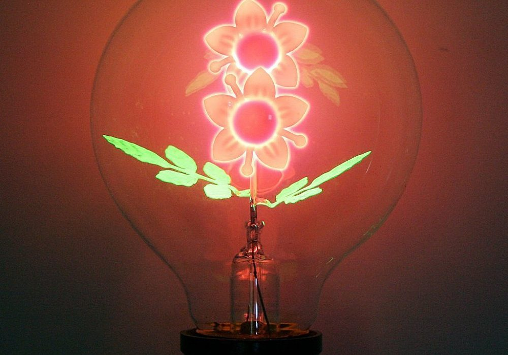 Flower Filament Light Bulb Unique Gift to Buy Her