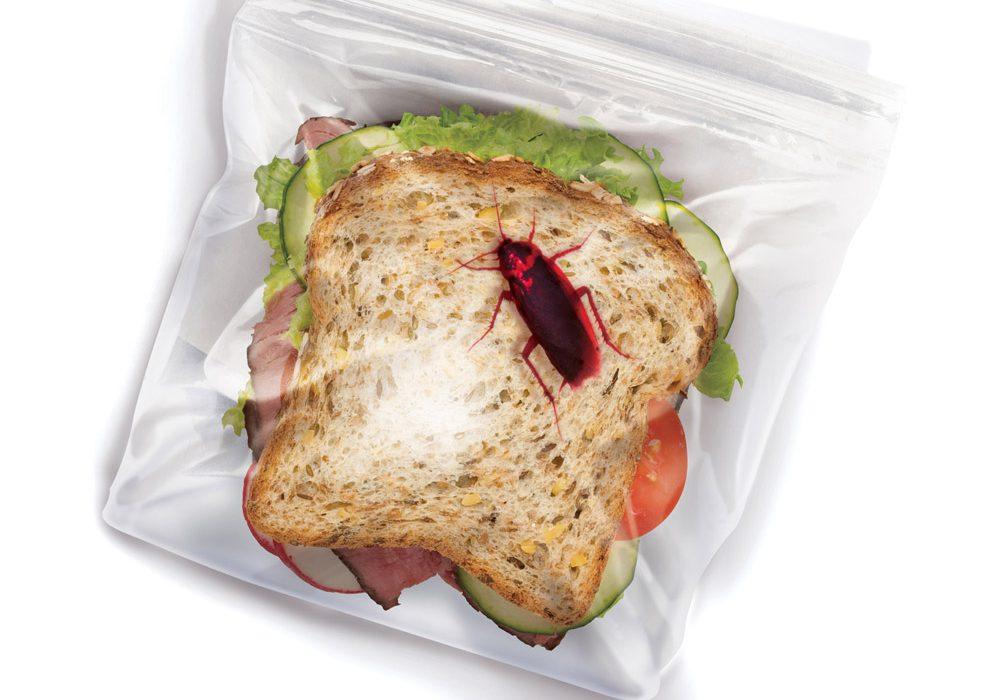 Fred Lunch Bugs Ziplock Sandwich Bags Funny Cheap Joke Idea