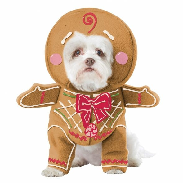 Gingerbread-Pup-Dog-Costume.jpg