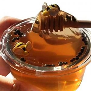 Honey Bee Clear Slime