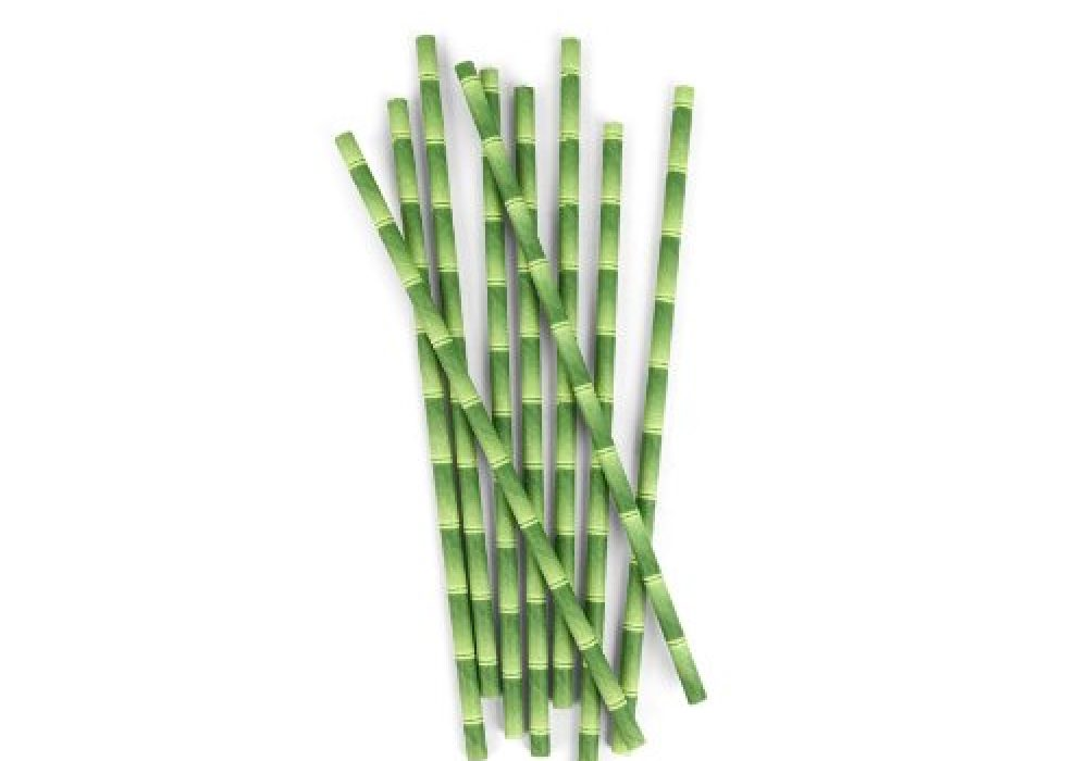 Kikkerland Biodegradable Paper Straws Party Accessory